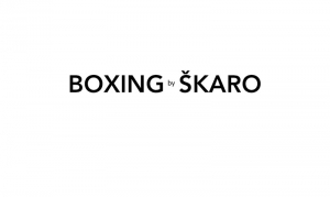 boxing-by-skaro