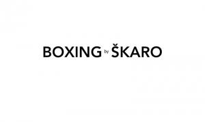 boxing-by-skaro