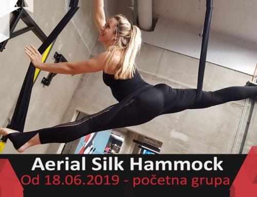 Aerial Hammock – početna grupa
